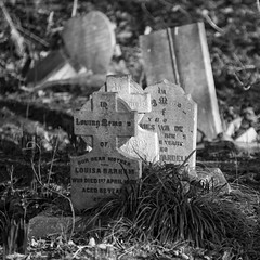 Tower Hamlets Cemetery Park, London (IFM Photographic) Tags: blackandwhite bw london ex monochrome cemetery canon sigma os bow f28 dg 70200mm towerhamlets magnificentseven 600d thcp hsm sigma70200mm towerhamletscemeterypark londonboroughoftowerhamlets bowcemetery towerhamletscemetry sigma70200mmf28exdgoshsm thecityoflondonandtowerhamletscemetery img6090a