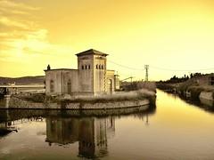 Cagliari - Molentargius (Alice Agus) Tags: sardegna saline cagliari molentargius