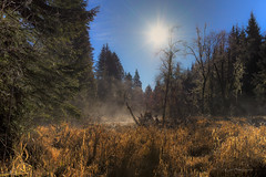 Feel the warmth (Howard Ryder) Tags: mist landscape nikon sunday sunny pacificnorthwest washingtonstate pnw snohomishcounty d610 northwestwashington ryderphotographic howardryder