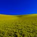 Vivid Hills