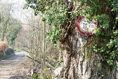 Bitte langsam! bei Oppenheim