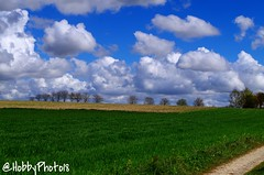 Cotton balls in the air (hobbyphoto18) Tags: sky cloud france field rural landscape countryside pentax cloudy ciel cielo nuage campagne nordpasdecalais champ k50 nuageux pentaxk50