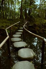Stepping Stones (Adrin Prez) Tags: garden temple pond kyoto path stones walkway stepping mossy
