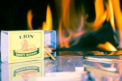 Lion Matches (Kylekevstar) Tags: reflection fire matches braai