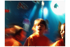 19| La Vie  Mort  20090513.1211** (Lieven SOETE) Tags: family famille boy brussels people girl familia kid chica child belgium belgique famiglia bambini familie young diversity bruxelles social menschen personas nia kind persone human chico enfant nio fille 2009 personnes mdchen meisje jovem jvenes junge joven garon ragazza jeune   intercultural umanit erkek diversit  interculturel socioartistic sintjansmolenbeeksaintjean