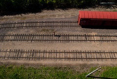 Walking the line (modestmoze) Tags: wood travel trees red brown man green nature grass lines car yellow metal walking outside outdoors spring sand day shadows carriage view brother transport traintracks may tracks rusty sunny ground fromabove line pole wires bro planks lithuania 2016 alytus 500px