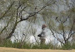 bird watcher (marianna armata) Tags: trees reflection bird water birds marianna swallows watcher armata p2330143