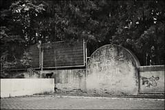 Gato (Santhero) Tags: blackandwhite bw espaa blancoynegro digital monocromo sevilla andaluca grafiti gato fujifilm fujinon sanjuandeaznalfarache fujifilmx santhero bwfp fujinonxf fujifilmxe1 fujinonxf1855mmf2840 fotosanthero parqueosset