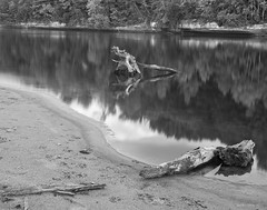 Peck's Landing - Wisconsin River (LeavenworthObey) Tags: landscape wisconsin wisconsinriver reflections nature glass lumber logs bluffs trees tracks sand peckslanding tranquil canoneos7d kitlensshot digitalzonesystem digitalphotography 2013 wwwjarobortizcom longexpoure nothdr singlecapture