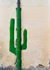 Cactus ((C)JJMB) Tags: cactus verde art pared calle exterior arte pintura vitoria vitoriagasteiz graffitis arteurbano grafitis