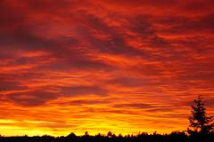 My sky (anka.anka28) Tags: