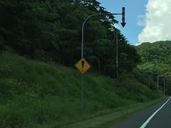 Excited Traffic Sign (sjrankin) Tags: road sign japan hokkaido edited trafficsign hdr yubari 28june2016