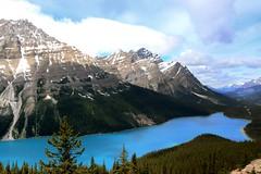 Bow Summit (RemotelyBoris) Tags: lake canada nature parks national alberta bow summit banff peyto