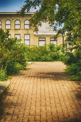 A Familiar Path (flashfix) Tags: trees ontario canada building green lines architecture nikon downtown shadows path ottawa bricks bluesky bushes edifice 2016 rideaucentre d7000 55mm300mm 2016inphotos june132016