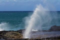 SpoutHorn2Jun16-16 (divindk) Tags: hawaii hawaiianislands kauai beach blowhole marine ocean sea spout spoutinghorn surf