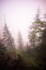 View from near the top, Rattlesnake Ridge. (Matt Benton) Tags: digital rattlesnakelake voigtlandersuperwideheliar15mmf45 sonyalpha7