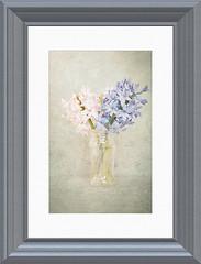 "vase (G. H. ""Jerry"" White) Tags: blue painterly flower photoshop frame vase topaz"