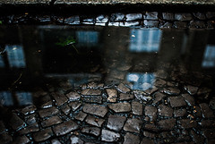 305/365 Remains of the Day (ewitsoe) Tags: street city windows summer urban storm reflection wet water pool rain 35mm puddle europe eu poland 365 puddles poznan stomes nikond80 ewitsoe