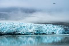 Glacial Impact (jdub003) Tags: blue reflection ice alaska bay frozen glacier