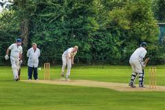 Bowled over (Evoljo) Tags: uk trees green sport ball nikon bat bowl cricket willow whites bowler oxfordshire hdr stumps abingdon umpire wicket batsman d7100