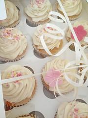 Simple Birthday Cupcakes