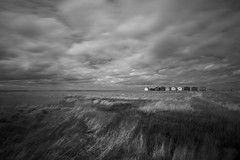 just blowing in the wind (stocks photography) Tags: coast seaside stocks beachhuts blackandwhitephotography seasalter gonewiththewind beachscape beachphotography downonthebeach coastalphotography justblowinginthewind stocksphotography michaelmarsh beachography