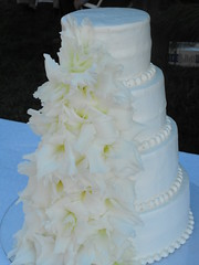DSCF0007 (cakeladySara1) Tags: wedding cakes is sweet it how saras