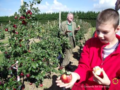 School Orchard07GfLScotland (Learning through Landscapes) Tags: fruit for orchard learning schools grounds fruitful gfl