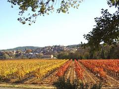 carces-automne