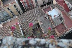 Terrasses de Vilafranca