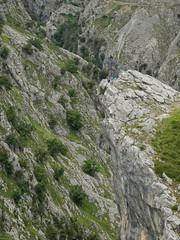 A un paso... (Valije) Tags: españa parquesnacionales rocks hiking asturias fujifilm gorges nationalparks canyons senderismo rocas x20 picosdeeuropa cabrales cañones desfiladeros