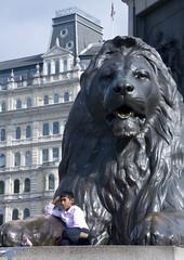 El nio y el len (xirmi) Tags: england sculpture london child lion trafalgarsquare escultura len nio