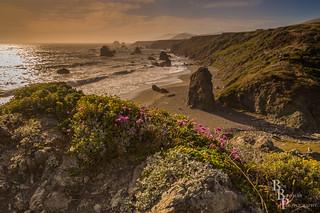 Colorful Craggy California Coast