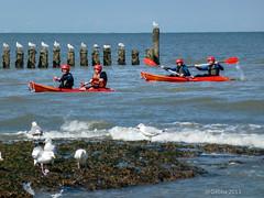 Met de kano op zee (Gebba1) Tags: mer water sport zee canoe kano cadzand flickrweekend cadzand2013