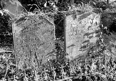 Stewkley Graves (R~P~M) Tags: uk greatbritain england abandoned cemetery grave graveyard unitedkingdom buckinghamshire headstone gravestone churchyard bucks stewkley
