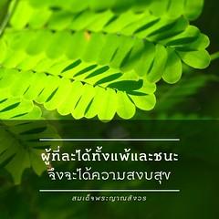 ขออนุญาตแนะนำ InstaDham แอฟดีๆที่ทำให้การถ่ายภาพแล้วแชร์ มีความหมายมากขึ้นครับ ^^ #instadham #igth #ig_th #thailand #igthailand #igersthailand #insta_thailand #thai_captions #thailand_allshots