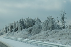 2009 Ice Storm Kentucky (Porch Dog) Tags: nikon kentucky icestorm garywhittington january2009 marshallcokentucky