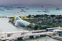 Singapore (Edi Bhler) Tags: bridge sky plant nature clouds ship strasse natur pflanze himmel wolken structure insel vehicle waters brcke bauwerk schiff watercraft berdendchern fahrzeuge gewsser 2470mmf28 erhht wasserfahrzeuge aufgebude nikondf