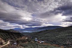 Nubes y olivos (EDU S.G.) Tags: sky espaa storm nikon paisaje andalucia invierno jaen andalusia montaa olivos jan olivar d7000 vistascielo