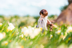 Blowin' in the Wind (のの♪) Tags: dd 270mm 白崎海岸