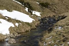 Ce ruisseau s'appelle le ... Bonheur ! (Michel Seguret Thanks all for 8.400 000 views) Tags: winter mountain france berg montagne nikon montana hiver invierno inverno languedoc d800 aigoual michelseguret