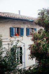 Oranges (Linus Wrn) Tags: windows italy oranges bergamo