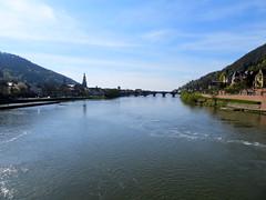 de Neckar