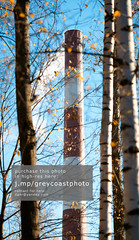 Factory chimney and trees. (creativemarket.photo) Tags: blue autumn trees chimney sky sunlight plant industry nature toxic ecology vertical outdoors smog spring day factory smoke air pipe atmosphere nobody nopeople dirty stack steam