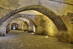 Castello di Vigevano (alfvet) Tags: nikon castello citt vigevano veterinarifotografi d5100