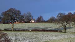 Wheelock Weather (Wildlife Terry) Tags: midwinter winter snow blizzard chaos frost wheelockrailtrail wheelocksandbachcheshire coldsnaps coldsnap mywinter