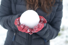 The Perfect Snowball (Soot Gremlin) Tags: uk winter england people snow cold english girl hands britain coat january snowball british snowing