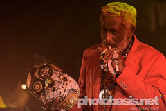 lee-scratch-perry-dub-cahmpions-festival-2015-WUK-25.jpg