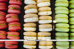 Macarons in Auckland (Naomi Rahim (thanks for 2 million hits)) Tags: travel pink newzealand food green nikon wanderlust auckland nz northisland foodie macarons foodphotography travelphotography milse nikond7000