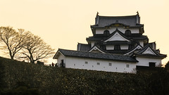 Hikone Castle (djryan78) Tags: travel trees winter building tree castle japan wall architecture canon afternoon outdoor dslr shiga hikone 18135 70d canon70d 18135stm